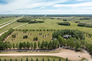 Photo 5: Paquette Acreage in Dundurn: Residential for sale (Dundurn Rm No. 314)  : MLS®# SK869771