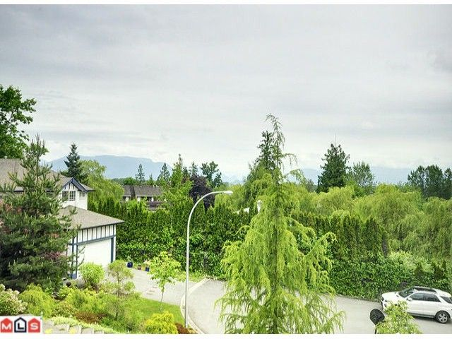 Photo 10: Photos: 10059 178TH Street in Surrey: Fraser Heights House for sale (North Surrey)  : MLS®# F1308968