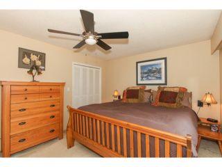 Photo 13: 5290 1ST AV in Tsawwassen: Pebble Hill House for sale : MLS®# V1118434