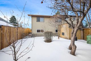 Photo 3: 128 Dovertree Place SE in Calgary: Dover Semi Detached for sale : MLS®# A1075565