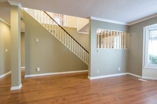 Photo 3: 10780 Canso Crescent in Richmond: Steveston North House for rent
