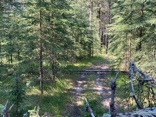 Photo 19: 32375 Range Road 62 Road: Rural Mountain View County Detached for sale : MLS®# A1139320