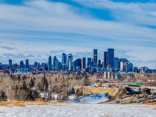 Photo 32: 2053 27 Street SE in Calgary: Southview House for sale : MLS®# C4174204