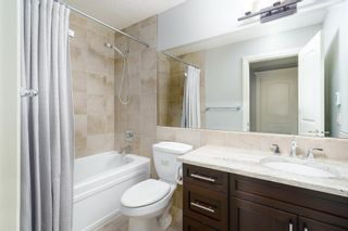 Photo 42: 300 Copperpond Circle SE in Calgary: Copperfield Detached for sale : MLS®# A1126422