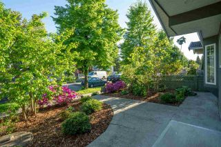 Photo 25: 3469 WILLIAM STREET in Vancouver: Renfrew VE House for sale (Vancouver East)  : MLS®# R2582317