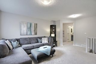 Photo 25: 138 Nolanshire Crescent NW in Calgary: Nolan Hill Detached for sale : MLS®# A1100424