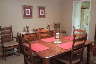 Photo 16: 7918 117 Street in Delta: Scottsdale House for sale (N. Delta)  : MLS®# R2236878