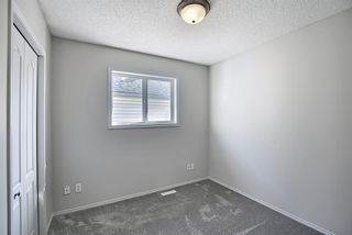 Photo 26: 253 Elgin Way SE in Calgary: McKenzie Towne Detached for sale : MLS®# A1087799