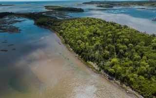 Photo 7: Lot Gaetz Island in Lower East Chezzetcook: 31-Lawrencetown, Lake Echo, Porters Lake Vacant Land for sale (Halifax-Dartmouth)  : MLS®# 202114479