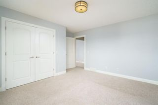 Photo 39: 300 Copperpond Circle SE in Calgary: Copperfield Detached for sale : MLS®# A1126422