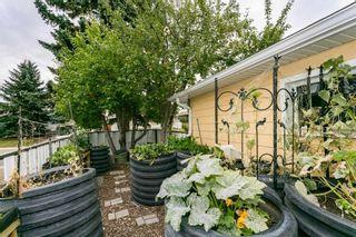Photo 39: 7208 84 Avenue in Edmonton: Zone 18 House for sale : MLS®# E4253666