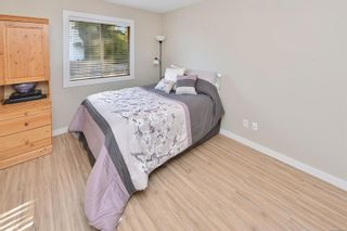 Photo 29: 3990 Hopesmore Dr in Saanich: SE Mt Doug House for sale (Saanich East)  : MLS®# 887284