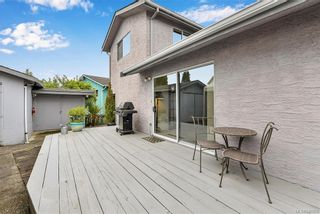 Photo 24: 799 Cameo St in Saanich: SE High Quadra House for sale (Saanich East)  : MLS®# 840208