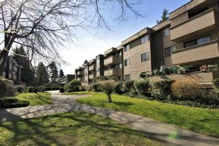 """Photo 18: 23 2444 WILSON Avenue in Port Coquitlam: Central Pt Coquitlam Condo for sale in """"ORCHARD"""" : MLS®# R2247251"""