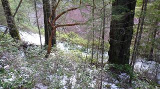 Photo 25: Lot B Mt. Matheson Rd in : Sk East Sooke Land for sale (Sooke)  : MLS®# 866391