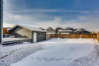 Photo 27: 103 Ravenswynd Rise SE: Airdrie Detached for sale : MLS®# A1064002