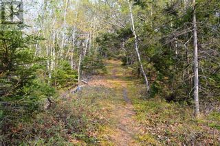 Photo 5: Old Kettle Road in Port Medway: Vacant Land for sale : MLS®# 202113253