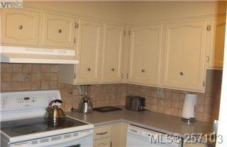 Photo 11: 101 1148 Goodwin St in VICTORIA: OB South Oak Bay Condo for sale (Oak Bay)  : MLS®# 490596