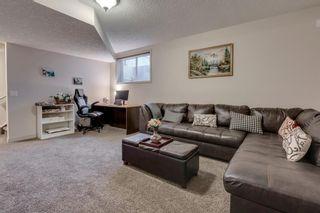 Photo 42: 239 AUBURN SPRINGS Close SE in Calgary: Auburn Bay Detached for sale : MLS®# A1061527