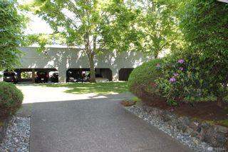 Photo 10: 119 900 Tolmie Ave in VICTORIA: SE Quadra Condo for sale (Saanich East)  : MLS®# 771380