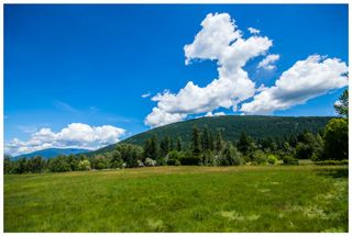 Photo 99: 1310 Northeast 51 Street in Salmon Arm: NE Salmon Arm House for sale : MLS®# 10112311