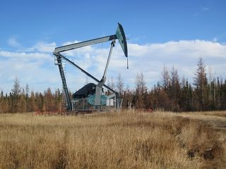 Photo 29: NW 24-54 RR 131: Niton Junction Rural Land for sale (Edson)  : MLS®# 32590