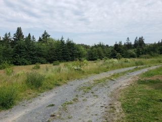 Photo 6: 8095 217 Highway in Centreville: 401-Digby County Residential for sale (Annapolis Valley)  : MLS®# 202116790