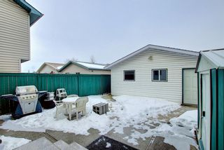Photo 31: 204 Mt Aberdeen Circle SE in Calgary: McKenzie Lake Detached for sale : MLS®# A1063368