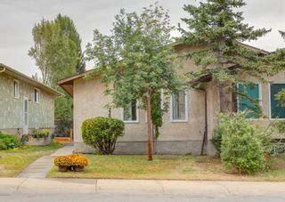 Photo 37: 228 Berwick Drive NW in Calgary: Beddington Heights Semi Detached for sale : MLS®# A1137889