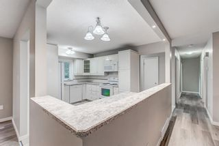 Photo 14: 272 Cannington Place SW in Calgary: Canyon Meadows Detached for sale : MLS®# A1152588