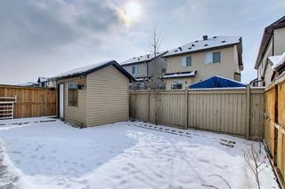 Photo 45: 458 Saddlelake Drive NE in Calgary: Saddle Ridge Detached for sale : MLS®# A1086829