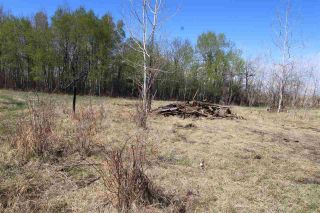 Photo 12: 57032 RR 50: Rural Lac Ste. Anne County Rural Land/Vacant Lot for sale : MLS®# E4244016