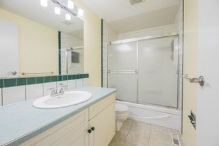 Photo 15: 639 TEMPLESIDE Road NE in Calgary: Temple Detached for sale : MLS®# A1136510