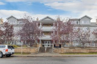 Main Photo: 217 790 Kingsmere Crescent SW in Calgary: Kingsland Apartment for sale : MLS®# A1152147