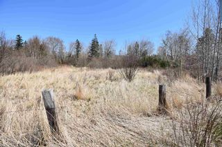 Photo 3: Lots North Range Cross Road in Barton: 401-Digby County Vacant Land for sale (Annapolis Valley)  : MLS®# 202110298