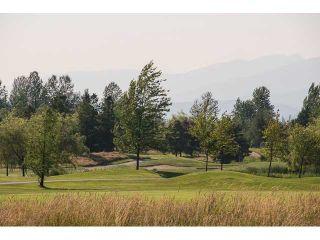 "Photo 20: 12475 DAVENPORT Drive in Maple Ridge: Northwest Maple Ridge House for sale in ""MCIVOR MEADOWS"" : MLS®# V1050883"