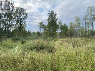 Photo 8: Lot 100 BLOCK DRIVE in 108 Mile Ranch: Vacant Land for sale : MLS®# R2623568