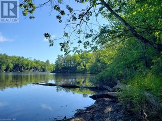 Photo 13: 8801 SEVERN RIVER in Orillia: Vacant Land for sale : MLS®# 40120545