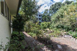 Photo 16: 918 Bay St in VICTORIA: Vi Hillside House for sale (Victoria)  : MLS®# 787949