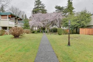 "Main Photo: 849 WESTVIEW Crescent in North Vancouver: Delbrook Townhouse for sale in ""Cypress Gardens"" : MLS®# R2272459"