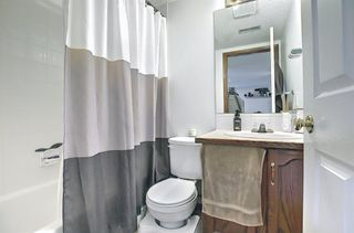 Photo 29: 279 Coral Springs Circle NE in Calgary: Coral Springs Detached for sale : MLS®# A1083552