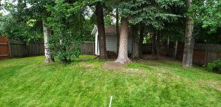 Photo 18: 5748 LEHMAN Street in Prince George: Hart Highway House for sale (PG City North (Zone 73))  : MLS®# R2543653