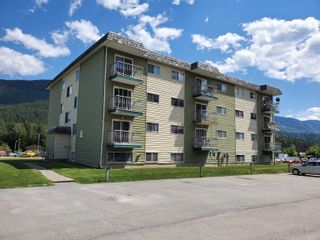 Photo 4: 124 SPRUCE Street in No City Value: Out of Town Multi-Family Commercial for sale : MLS®# C8040519