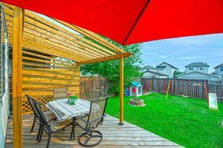 Photo 29: 140 Taravista Crescent NE in Calgary: Taradale Detached for sale : MLS®# A1134160