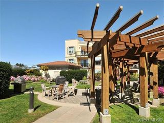 Photo 19: 404 1620 McKenzie Ave in VICTORIA: SE Lambrick Park Condo for sale (Saanich East)  : MLS®# 706085