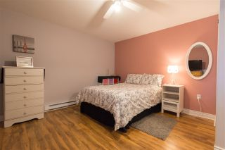 Photo 25: 2596 HIGHWAY 201 in East Kingston: 404-Kings County Residential for sale (Annapolis Valley)  : MLS®# 202003634