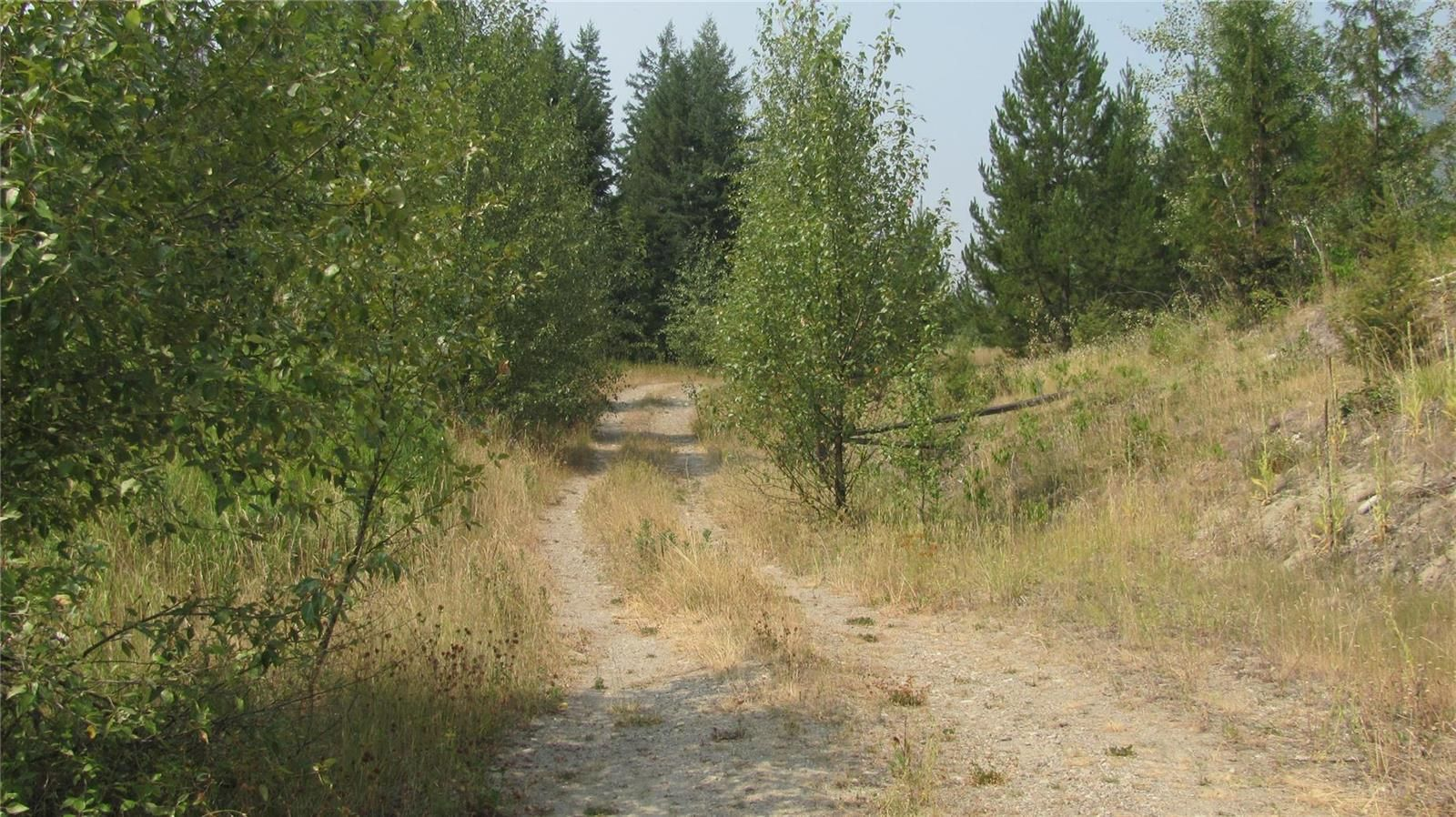 Main Photo: 80 Acres Creighton Valley Road, in Lumby: Vacant Land for sale : MLS®# 10239894