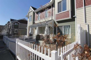 Photo 29: 20 2003 RABBIT HILL Road NW in Edmonton: Zone 14 Townhouse for sale : MLS®# E4238123