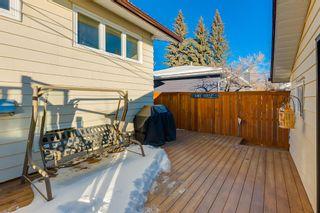 Photo 41: 1072 Acadia Drive SE in Calgary: Lake Bonavista Detached for sale : MLS®# A1058611