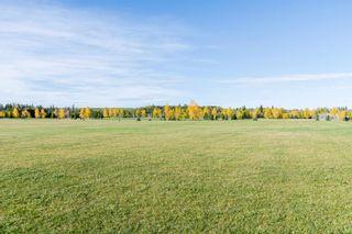 Photo 36: 21323 59 Avenue in Edmonton: Zone 58 House for sale : MLS®# E4264282
